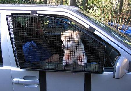 Dog Fence Window Diy