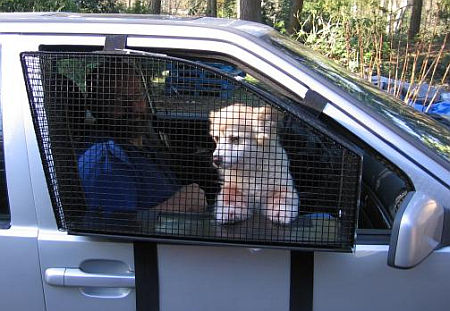 Breezeguard Car Window Dog Cage Neatorama