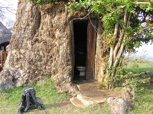 Toilet inside a baobab tree