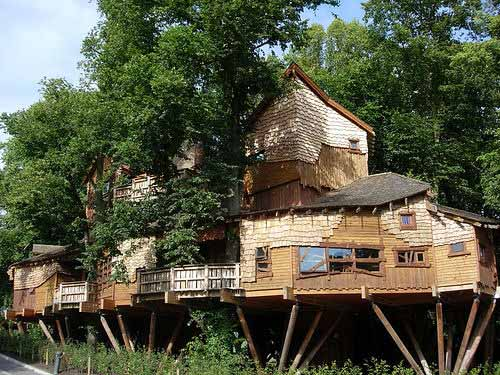 worlds largest treehouse neatorama - Biggest Treehouse In The World 2016