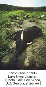 Lake Nyos Cameroon 1986