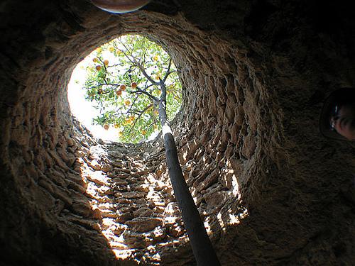 Forestiere Underground Garden Neatorama