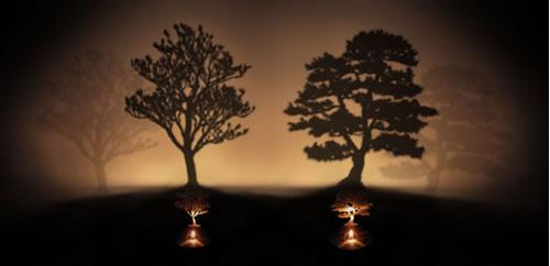 Oil Lamp Shadow Projector By Adam Frank Neatorama