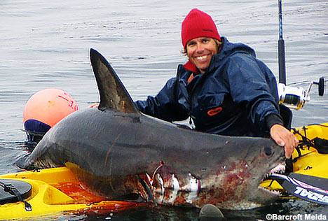 Extreme fishing hunting for sharks on a kayak neatorama for Shark fishing games