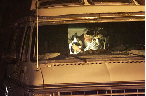 Woman living in car with her cat