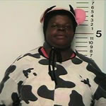 Michele Allen For Disorderly Conduct While Wearing A Cow Costume