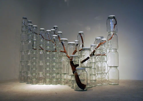 Amazing New York Based Artist Naoko Ito Transformed A Tree Branch Into Art By  Sawing It Into Small Pieces, Putting Them In Jars, Then Stacking The Jars  Into The ...