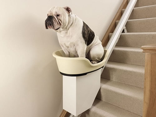 Stair Lifts For Fat Dogs Neatorama