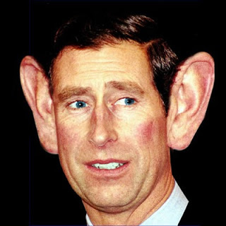 Segel Ohren