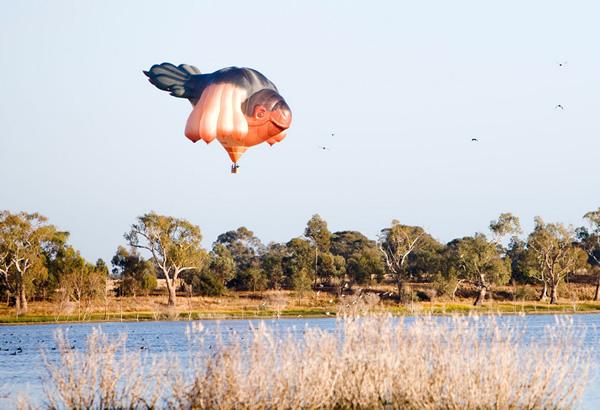 Skywhale hot air balloon over a lake