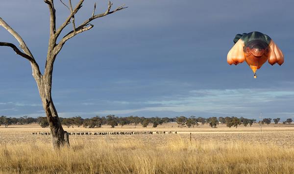 Skywhale hot air balloon over grassland