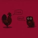 Contemporary Avian Discourse