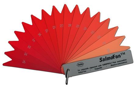 SalmoFan
