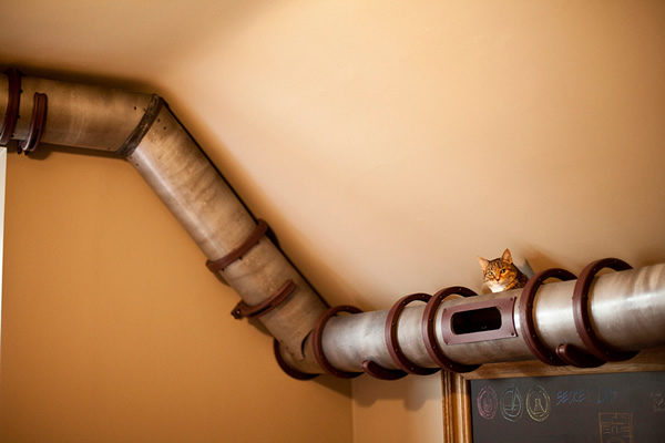 10 Amazing Cat Structures…from Neatorama