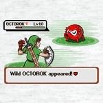 Wild Octorok Appeared