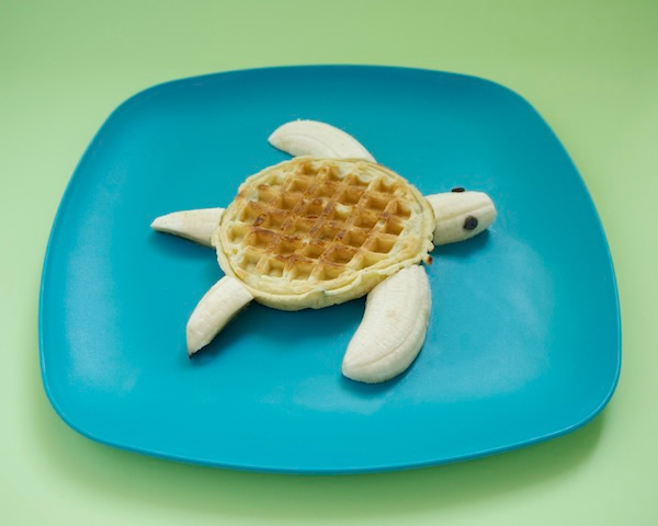 Y Wont My Turtle Eat Simply Cute Children M...