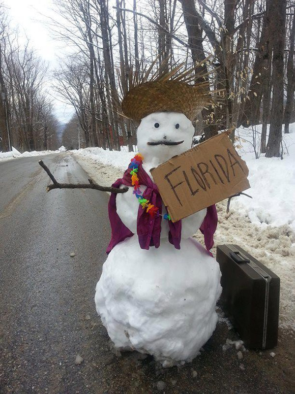 http://static.neatorama.com/images/2014-02/snowman-hitchhiking-florida.jpg|https://earthriderdotcom.files.wordpress.com/2014/02/snowman-diane-h-mcdowell-gray-and-donna-cox-austin.jpg|/image.php?image=ineptocracy/snowman.jpg