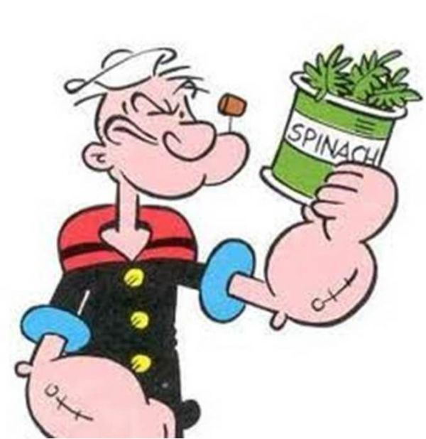 Image result for popeye and spinach
