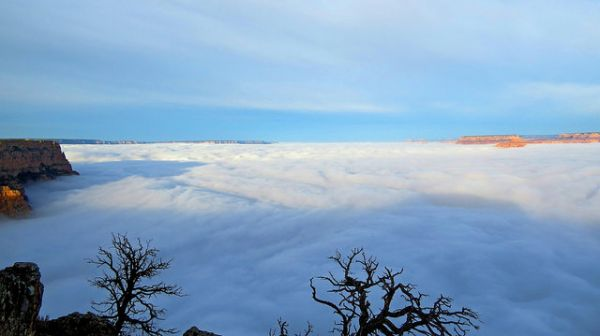 Last Week, A Sea of Fog Completely Filled the Grand Canyon