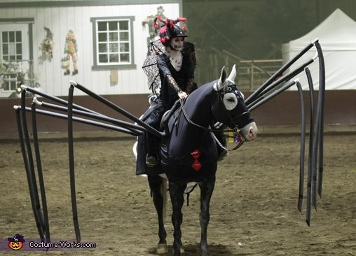 Two Black Widows : horse costume two person  - Germanpascual.Com
