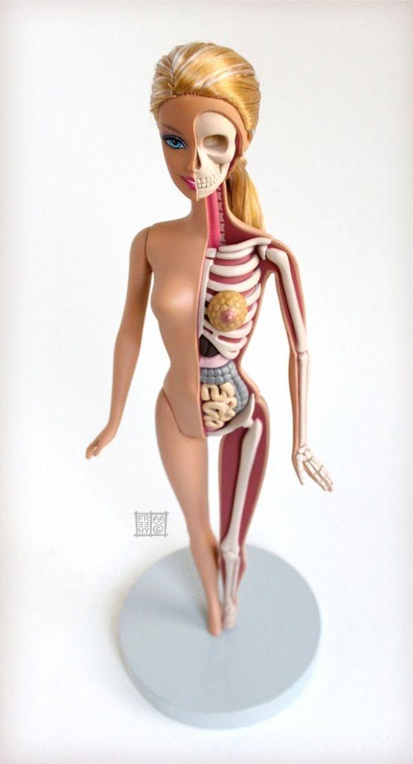 Anatomical Barbie By Jason Freeny - Neatorama