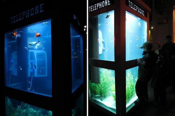 Old Phone Booths Converted Into Beautiful Aquariums