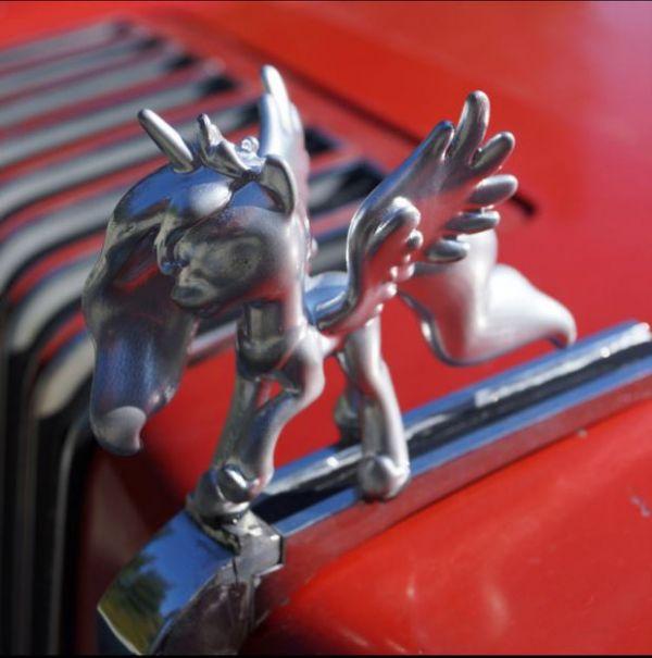 Custom Hood Ornaments >> My Little Pony Hood Ornament Neatorama