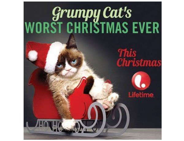 Grumpy cat gets a movie deal neatorama thecheapjerseys Image collections