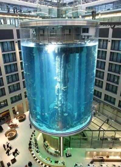 Radisson aquarium