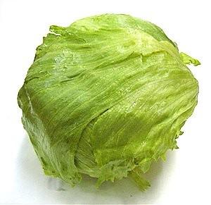 the lettuce