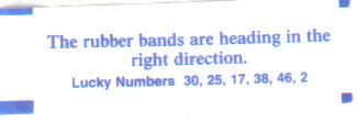 rubber_bands.jpg