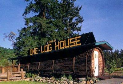 The One Log House