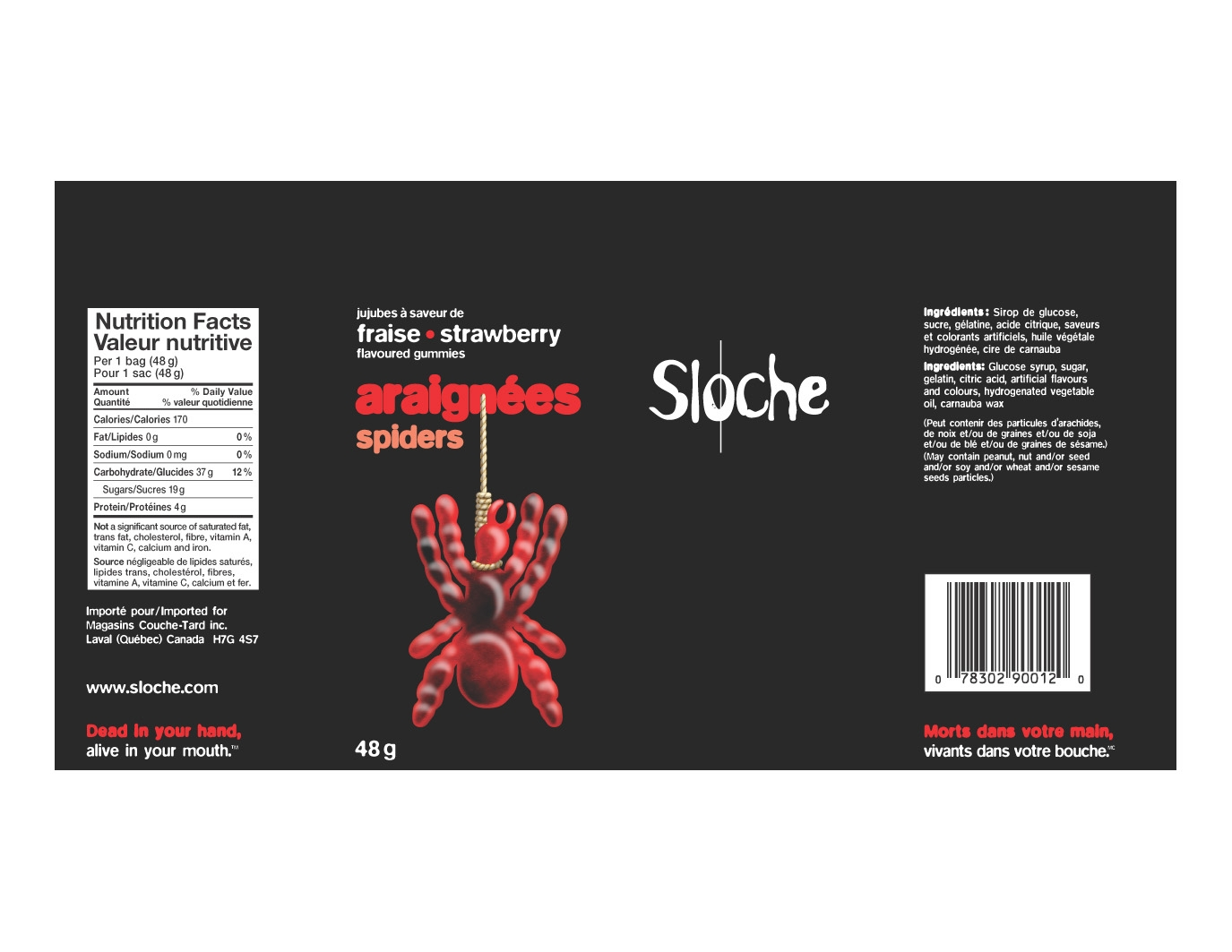 sloche_spiders.JPG