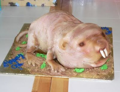 How To Make A Rat Shaped Cake