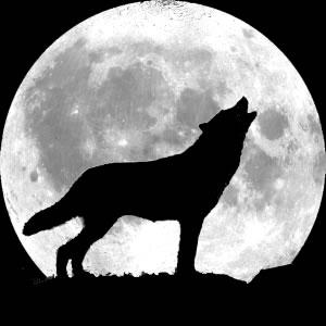 http://www.neatorama.com/wp-content/uploads/2010/11/howling_wolf.jpg