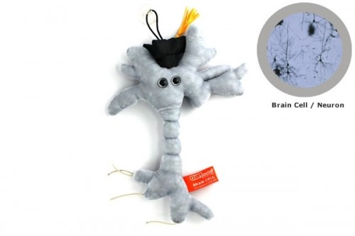 Graduation Brain Cell Neatorama