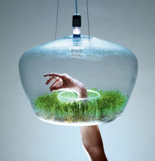 Greenhouse Lamp Neatorama