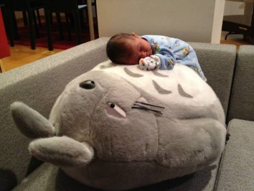 baby asleep giant plush totoro neatorama. Black Bedroom Furniture Sets. Home Design Ideas