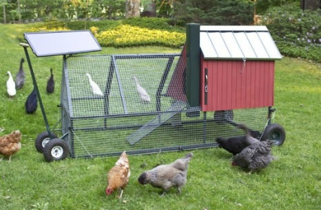 13 Creative Chicken Coop Designs Neatorama