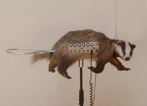 The Badgermin Is A Stuffed Badger Theremin Neatorama