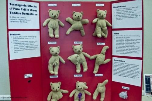 Fake Science Fair Project: Teddy Bear Birth Defects ...