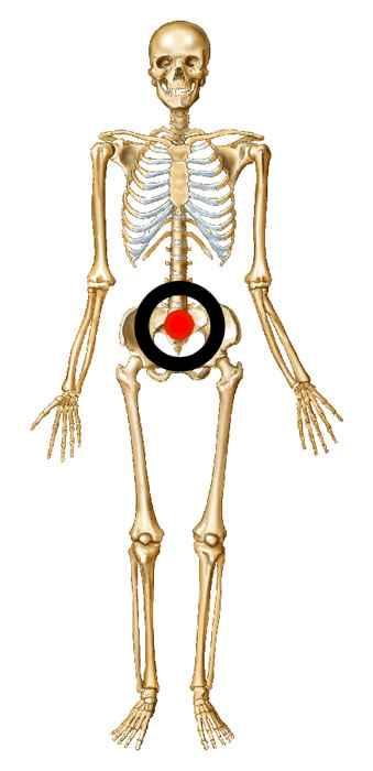 kill you skeleton for - photo #34
